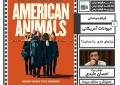 تحلیل «حیوانات آمریکایی» در یزد