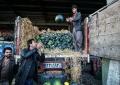 80 درصد بازار میوه وتره بار یزد در اختبار اتباع خارجی است